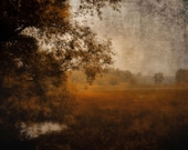 """Rustic dark landscape dreamy nature woodland autumn forest trees meadow  - """"Morning walk"""" 8 x 10"""