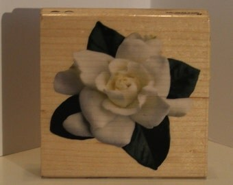 Open Rose Blossom Rubber Stamp