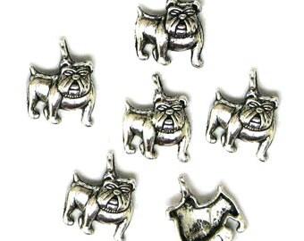 6 Silver Plated Bulldog Charms Bull Dog Dogs