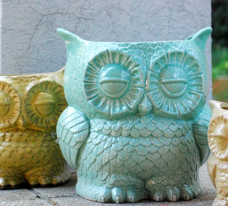 Large planter cactus planter extra large planter Owl kitchen accessories