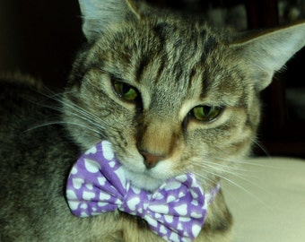 Breakaway Cat Bow Tie Collar With Lavander and White Hearts