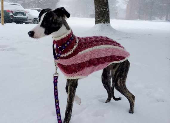 Whippet dog sweaters - Pattern Central - KnittingHelp Forum Community