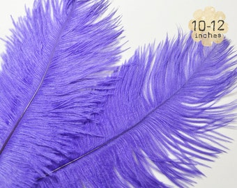 """10 pcs - PURPLE - 10-12"""" inch - Ostrich Feather Plumes - Dyed Drabs Feathers"""