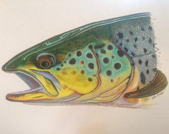 "SMALL 8.5x11"" Brown Trout Print"