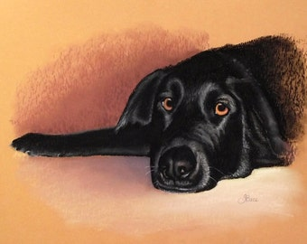 Custom Black Labrador Pastel Pet Portrait Painting by Jody Ball Art