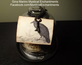 Nevermore ! Quoth The Raven- Large Glass Cloche with Raven