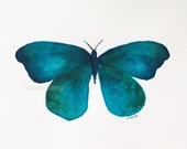 """teal butterfly watercolor archival print of original watercolor 8"""" x 10"""""""