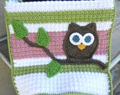 Owl Baby Blanket Lovey Size Girl Baby Shower Gift Pink Green