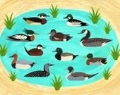 Duck Pond Card