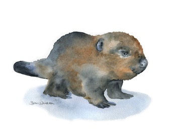 Baby Beaver Watercolor Painting - Giclee Print - 10 x 8 - Nursery Art - Woodland Animal 11 x 8.5