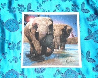 Elephant Trail 8 1/2 x 8 1/2 digital print