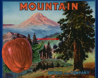1940s Mountains Forest Apples Portland Oregon Crate Label Mt St Helens