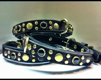 Black Brown Brass and Class Leather Dog Collar