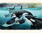 Orcas: Digital Print on Fine Art Paper