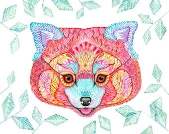 Red panda, animal art print, pet illustration, size 10x8 (No. 54)