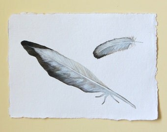 Feathers watercolour original painting illustration bird series