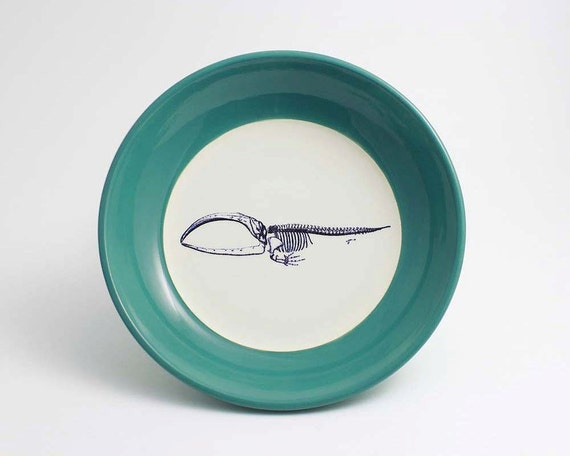 Whale Skeleton Anatomy Bowl in Teal and White