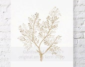 Sea Fern in Natural Watercolor Print 8x10 - Sea Coral Wall Art in Natural Taupe