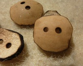 Gourd Buttons