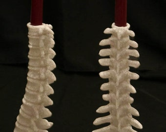 Anatomical Spine candle holder or vase
