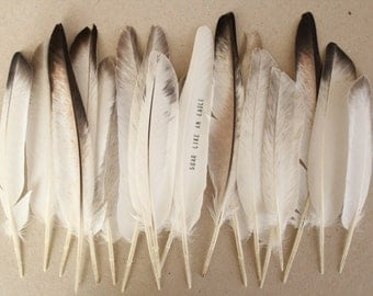 Boho feathers . woodland wedding favors . dream catcher feathers . feather with Words . I Love You feather . real natural feathers
