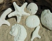 100% Edible Gum Paste Large White Large Sea Shells and Coral Cake Toppers -- Made to Order
