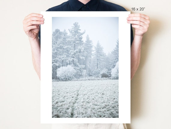Winter landscape photography, white forest scene. Pastel blue frost photograph. Northumberland fine art photo print. 5x7, 8x10 to 30x40