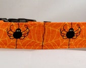 Dog  Collar - Dog, Martingale or Cat Collar - All Sizes - Spiders
