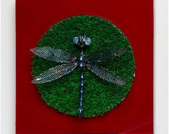 Dragonfly - wall art panel