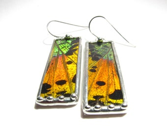 Real Handmade Sunset Moth Butterfly Wing Jewlery