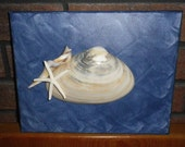 Canvas Shell Art