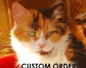 Reserved Custom Order Listing for  Reignsrevenge only