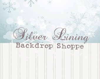 5 ft x 10ft Photography Backdrop & Floordrop Split Combo 2fer CHRISTMAS Boutique SNOWFLAKES