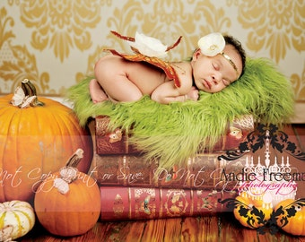6ft x 11ft FALL Lori Damask / Vinyl Photography Backdrop / Perfect for Autumn