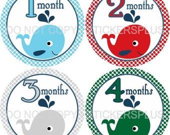 Monthly Baby Boy Milestone Stickers Baby Month Stickers Nautical Ocean Whale Shower Gift Baby PRECUT Bodysuit Stickers Nursery Decor