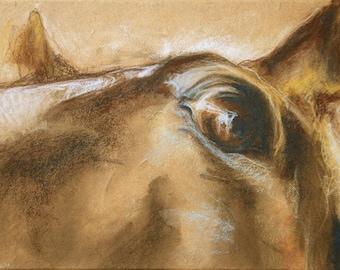 Horse Look IX - Original Pastels Horse Drawing