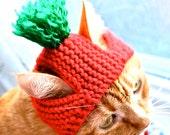 Tomato Dog Costume - Hand Knit Dog Hat - Custom Sizing - Dog Halloween Costume