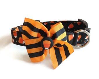 Halloween Candy Corn Dog Collar size Medium