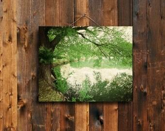 Golden Days - Green landscape canvas - Green tree art - Folk art - Green tree decor - Reflection decor - Green home decor