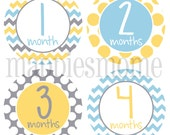 Monthly Baby Stickers, Milestone Stickers, Baby Month Stickers, Monthly Bodysuit Sticker Monthly Stickers Yellow Gray Blue(Neutral One)