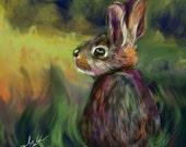 Bunny - Print