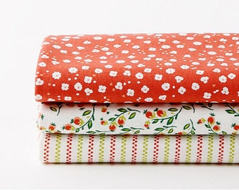 Assorted Pattern Fabric Pack 1/4 Yard (DL47)