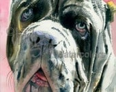 "Neopolitan Mastiff, AKC Non Sporting, Pet Portrait Dog Watercolor Painting Art Print, Wall Art, Home Decor, ""Neo"" Judith Stein, k9stein"