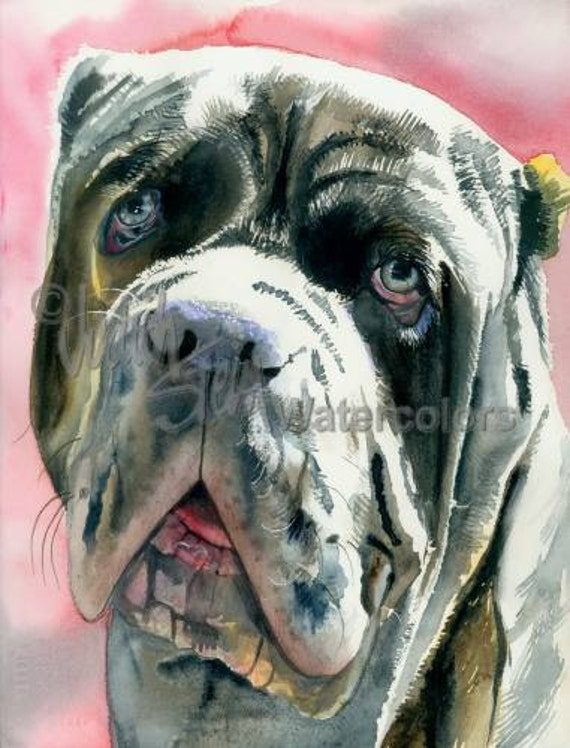 "Neopolitan Mastiff, AKC Non Sporting, Pet Portrait Dog Watercolor Painting Art Print, Wall Art, Home Decor, ""Neo"" Judith Stein, k9stein"