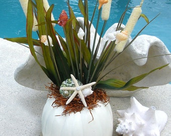 Pumpkin with seashells for Coastal Halloween Centerpiece Decoration