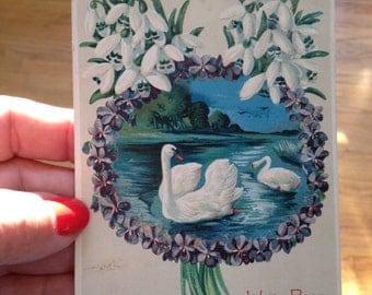Vintage Postcard with Swans 1912