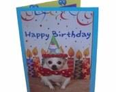 Chihuahua Birthday Card, Fun Dog Birthday Card
