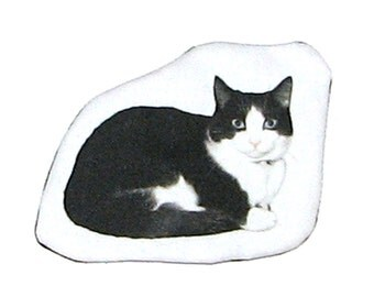 Catnip toy in pet photo printed cotton twill