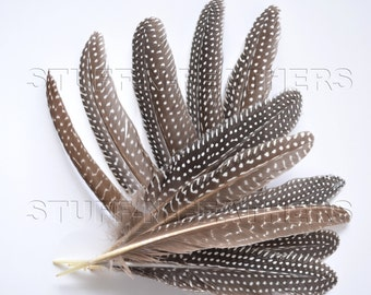 Guinea fowl wing feathers, natural black brown polka dot loose feathers quills for millinery, crafts / 6-8 in (16-20 cm) long, 12 pcs/F138-6