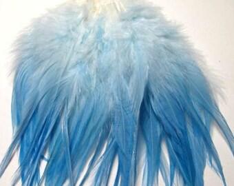 Rooster Saddle Hackle - Light Blue Ombre